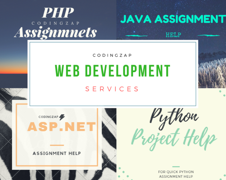 Web Development Services at codingzap